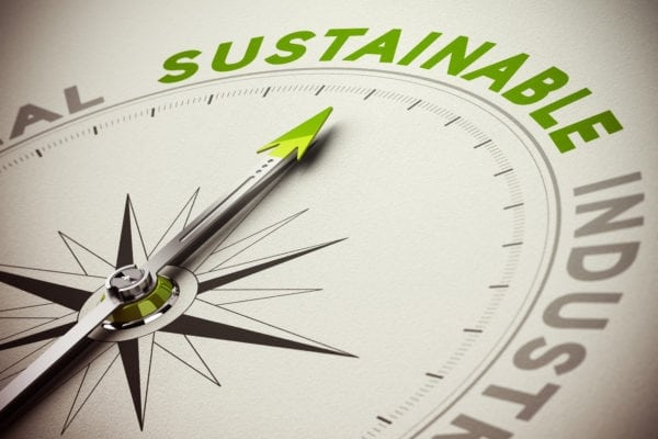 Understanding Sustainability